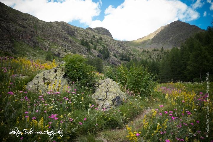 Au cœur du Parc National du Mercantour © Sébastien TORCHIO, www.Annecy.Photo