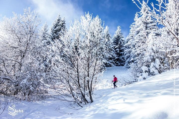 Randonnée Raquette à Neige dans les Bauges - © Sébastien TORCHIO, www.Annecy.Photo