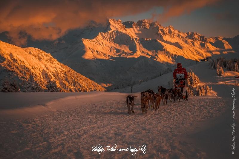 Photographe La Grande Odyssée Savoie Mont-Blanc, course de chiens de Traineaux à travers les Alpes - Sébastien TORCHIO Photographe Sport - www.Annecy.Photo