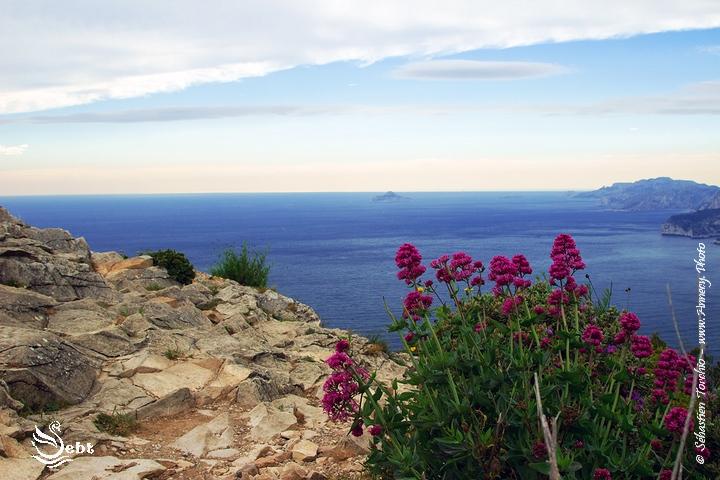 La Méditerranée vue depuis les Hauteurs des Calanques © Sébastien TORCHIO, www.Annecy.Photo