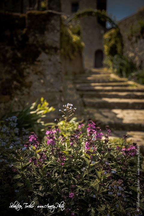 Ruelle fleurie du village médiéval d'Yvoire © Sébastien TORCHIO, www.Annecy.Photo