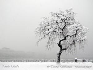Retour de la neige et de l'hiver sur Annecy - © TORCHIO Sébastien