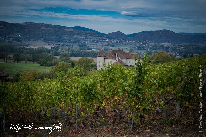 Chambres d'hôtes Château de La Mar au cœur des vignobles de Jongieux © Sébastien TORCHIO, www.Annecy.Photo