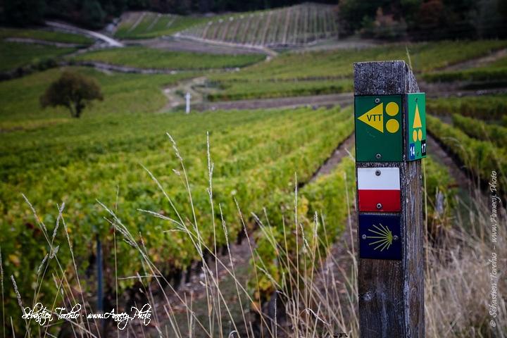 GR9 et GR 65 vers Saint-Jacques de Compostelle © Sébastien TORCHIO, www.Annecy.Photo