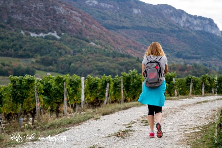 Randonnée pédestre à travers les vignoble de Savoie © Sébastien TORCHIO, www.Annecy.Photo