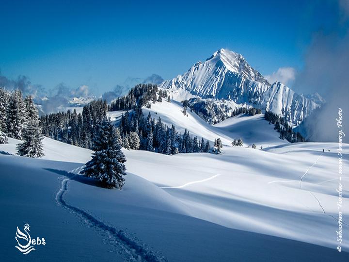 1er pas en Raquettes à Neige - © Sébastien TORCHIO, www.Annecy.Photo
