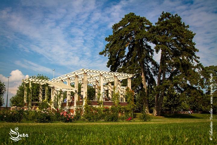 Roseraie du parc de La Grange - © Sébastien TORCHIO, www.Annecy.Photo
