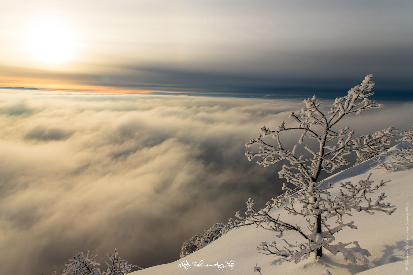 Panorama Hivernal Veyrier - © Sébastien TORCHIO, www.Annecy.Photo