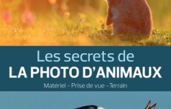 Les secrets de la photo d'animaux d'Erwan BALANÇA