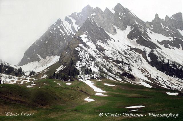 L'or blanc se met au vert - © TORCHIO Sébastien